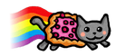 Emoji for fly_nyancat