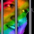LGBTQ_gay_jail