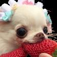 Emoji for strawberryBOYE