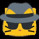 meowspy
