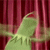 KermitSpaz
