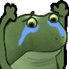 :FrogCheerSad: Discord Emote