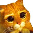 :pussCute: Discord Emote