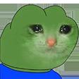 :Pepecat: Discord Emote