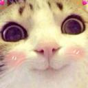 Emoji for CatBlushSmile