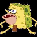 spongeferal