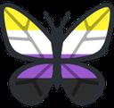 Enbyfly