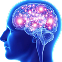 :brain2: Discord Emote