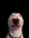 Emoji for walter