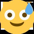 :worry: Discord Emote