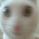 :FTGPcatwoke: Discord Emote