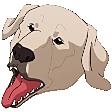 Emoji for ohmynaga