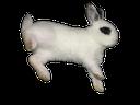 Emoji for bunhop