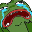 :Pepe_Meltdown: Discord Emote