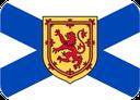 flag_ns