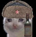RusKot