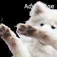 :boofdab: Discord Emote