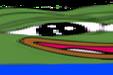:widepeepoHappy2: Discord Emote