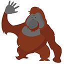 :Orangu2: Discord Emote