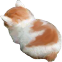 :am_angy: Discord Emote