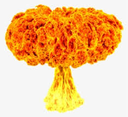 Emoji for FireMushroom