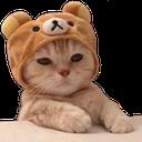 Emoji for cathmm