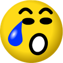 Emoji for xcrying