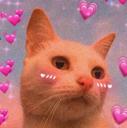 :cat_love: Discord Emote
