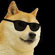 DogeCool