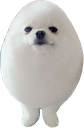 Emoji for eggdog