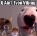 :youaintvibin: Discord Emote