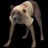 :doggi: