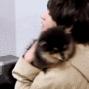 yeontan_hug