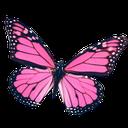 rhypinkbutterfly