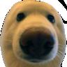Emoji for boop