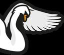 :SwanRight: