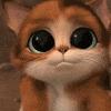 D_Kitten1