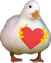 GooseLoveU