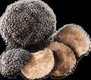 :truffles: