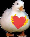 Love_Goose_LP