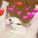 Kitty_Heart_Brr_LP