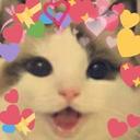 Love_KittyBomb_LP