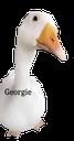 Georgie23