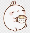 Bunny_eat