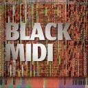 Black MIDI Community Hub