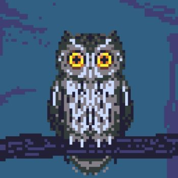 Icon for Owl Realm - Official Discord