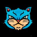 KittyPop Community