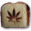 The Ivory Toast