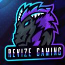 Revize Gaming