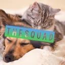 the squad  ♡